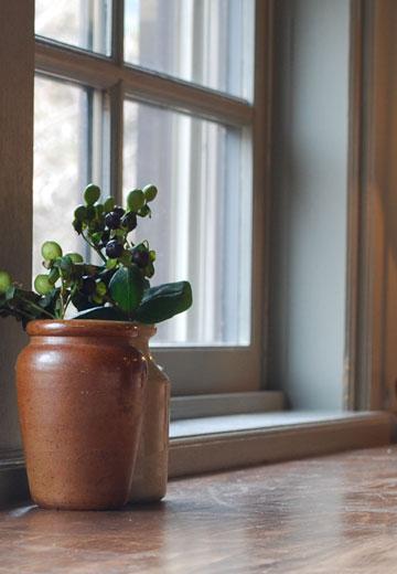 店内にはかわいい植物があります。