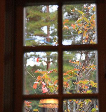 大きな窓からは四季を感じる事が出来ます。